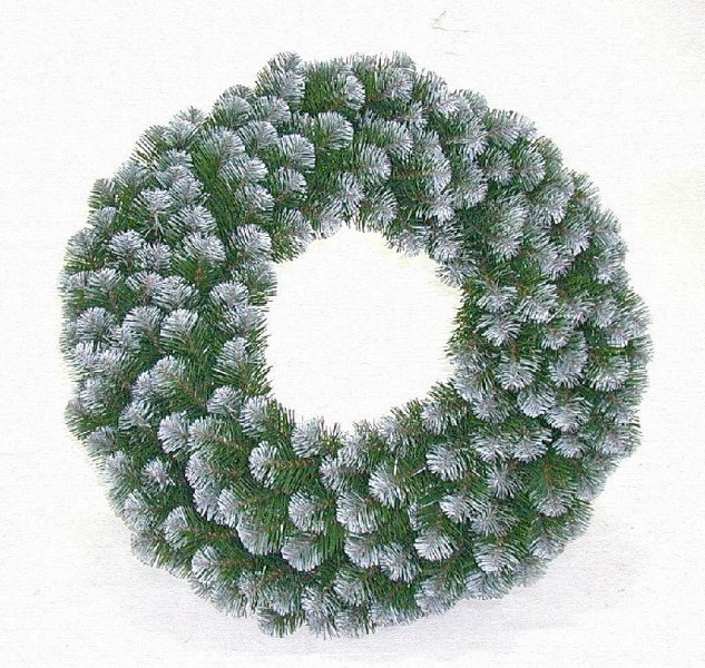 Alberta Spruce frosted wreath
